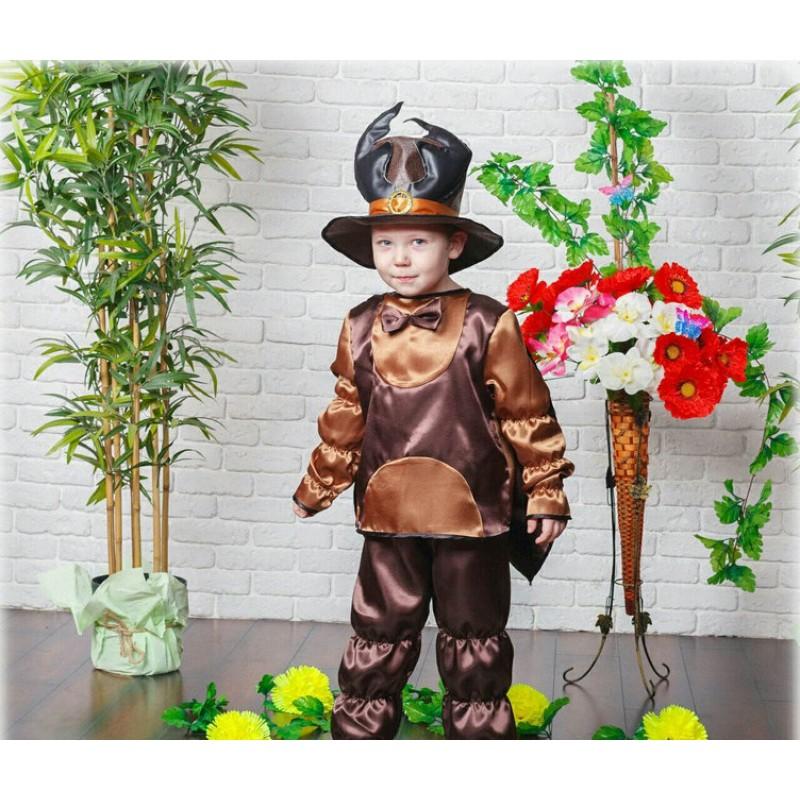 ffe304f2b5530 Карнавальный костюм Жук